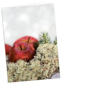 Kortin kannessa on valokuva punasista omenoista jäkäläpedillä.