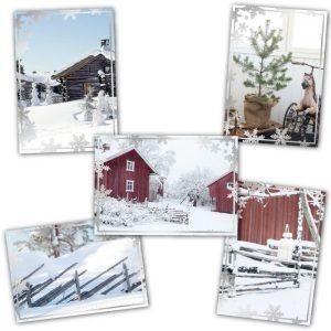 Viisi erilaista joulukorttia. Kuvituksena valokuvat.