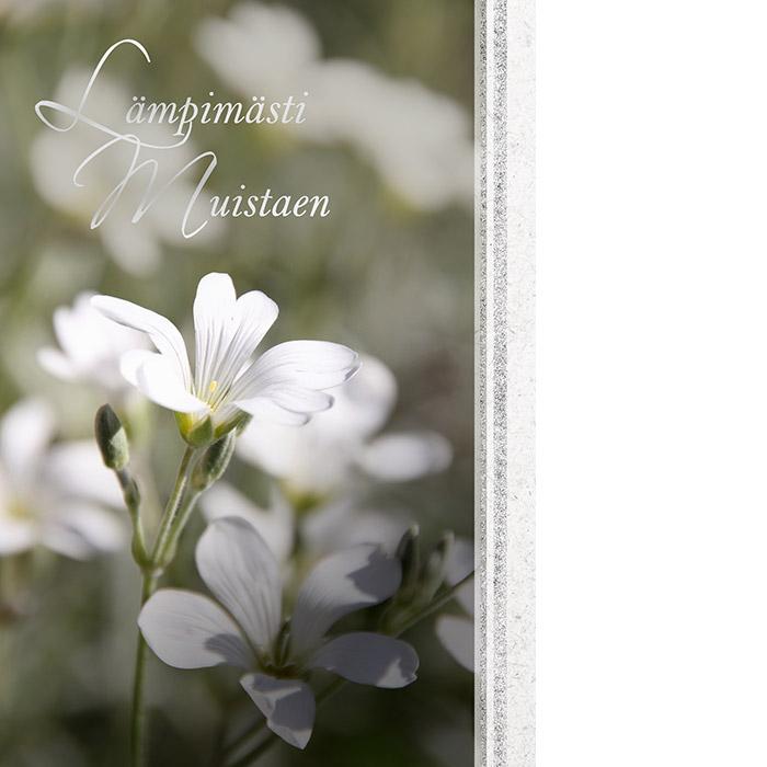 Adressin kannessa on valkoinen kukka, jossa hopeanhohtoinen varsi sekä teksti Lämpimästi muistaen.