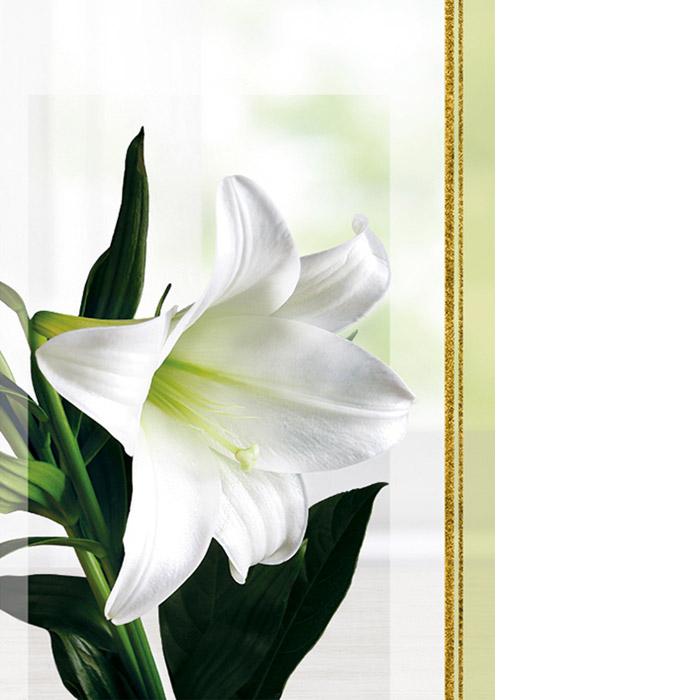 Kannessa iso valkoinen lilja.